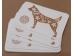 Amulett - Sea aasta rahakoti kaart - Kuldne Koer