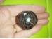 Granaat - lihvitud - rodoliit