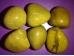 Jaspis - kollane jaspis - lihvitud