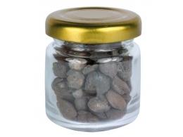 Kivistis - ammoniidid - Brakiopood pudelis - TALVINE ALLAHINDLUS