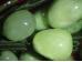Poolvääriskividest viinamarjakobar -  fluoriit ja serpentiin - ALLAHINDLUS
