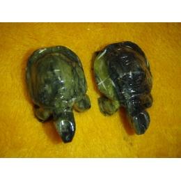 Serpentiin - nikerdatud kilpkonn
