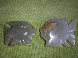 Sardoonüks - nikerdatud kala - VIIMASED