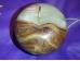 Sardoonüks - õun