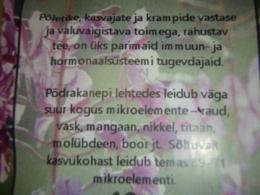 Mõnus taimetee - Ahtalehine põdrakanep